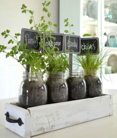 - Table Top Herb Garden…from an old pallet! - Table Top Herb Garden…from an old pallet! DIY Table Top Herb Garden…from an old pallet! Culture D'herbes, Herb Garden Design, Herbs Garden, Diy Garden, Balcony Garden, Party Garden, Garden Tub, Garden Shrubs, Garden Oasis