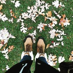 #fistdayofboots #fall soon I'll have to wear these all the time #leaves #boots @uggaustralia