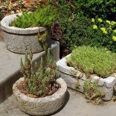 DIY {Concrete Trough} Planters!