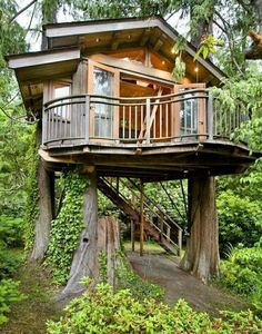 How cool to have a grown up treehouse!