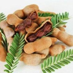 Whilst Tamarind, Tamarindus indica, is indigenous to Africa, Tamarind has been grown in S. Tamarind is known as Makham in Thailand Fruit And Veg, Fruits And Vegetables, Veggies, Tamarind Health Benefits, Tamarind Fruit, Tamarindus Indica, Fruit Photography, Exotic Fruit, Asian Recipes