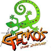 Gecko's Island Adventures: Land & Sea Package, St. Croix, US Virgin Islands