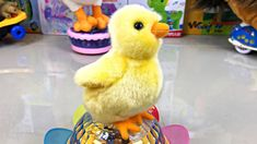 This is about farm birds: rooster, hen, chicken and a lovely duck. Why do chickens take dust baths? Farm Animals, Cute Animals, Dancing Toys, Hen Chicken, Youtube Banners, Funny Toys, Pet Toys, Kids Learning, Rooster