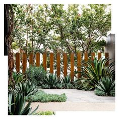 61 Ideas For House Front Fence Modern Landscaping, Front Yard Landscaping, Landscaping Ideas, Landscape Plans, Landscape Design, Fence Design, Garden Design, Fence Screening, Screening Ideas