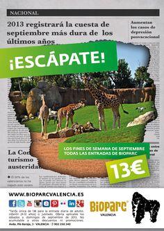 En septiembre, ¡Escápate a Bioparc Valencia! Todas las entradas de los fines de semana con tarifa única de 13€. Más información: http://www.bioparcvalencia.es/informacion-al-visitante/promocion-septiembre-2013-escapate/