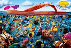 sao-paulo-alpargatas-havaianas-fish-print-66028-adeevee.jpg (3000×2035)