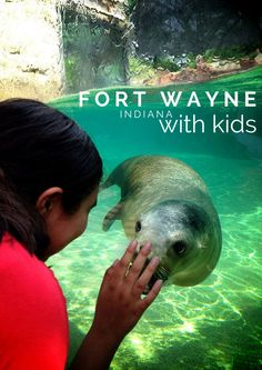 Take the kids to Fort Wayne Indiana for an unexpected journey through creatures, scientific knowledge and one hotel you don't want to miss!