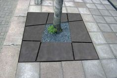 Grijsen - Mosa (Tree grids)