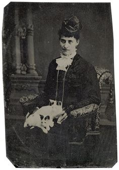 Tintype of Woman with Two Cats