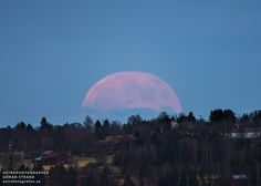 ASTROFOTOGRAFEN - Professional Astrophotographer Göran Strand from Sweden: Astronomy Picture Of the Day - A Strawberry Moon