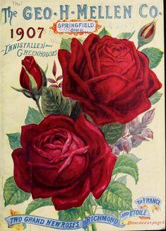 1907 - The Geo. Mellen Co. Vintage Diy, Vintage Labels, Vintage Ephemera, Vintage Cards, Vintage Paper, Vintage Pictures, Vintage Images, Vintage Gardening, Organic Gardening