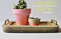 DIY Gold Concrete Serving Tray