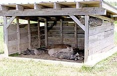 The Basics of Raising Pigs ( do something like this but with pallets)