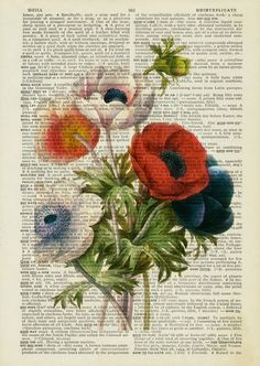 vintage anemone artwork - printed on old page from dictionary Book Page Art, Book Art, Artwork Prints, Poster Prints, Clown Paintings, Old Book Crafts, Paisley Art, Newspaper Art, Book Flowers