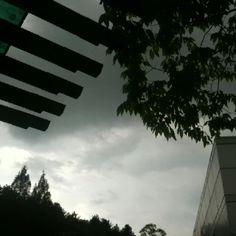 비가올듯?