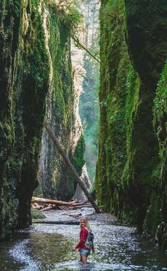 Oneonta gorge, one of the best waterfall hikes near Portland Oregon! Beautiful Places To Visit, Oh The Places You'll Go, Cool Places To Visit, Places To Travel, Travel Destinations, Oregon Road Trip, Oregon Travel, Travel Usa, Oregon Vacation
