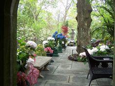 Relax in side yard Princeton NJ