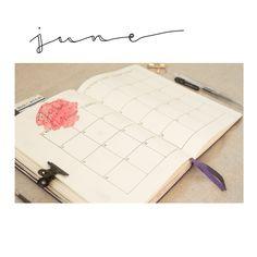 Bullet Journal Inspiration: Monthly Log for June.