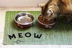 Craft these four fun and functional placemats to create a pet-friendly dining spot. For more unique DIY projects, visit P&G everyday today!