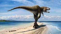 Nieuwe reus ontdekt in de vleesetende dinosaurusfamilie
