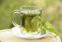 Nettle Tea Benefits and Warnings