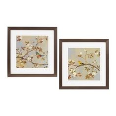 Sitting Songbirds Framed Art, Set of 2 | Kirkland's