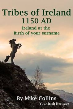 Do you have a Irish surname in your family tree? How much do you know about Ireland at the birth of your Irish surname? Read our article to find out more about the Tribes of Ireland at the birth of your Irish surname.   #Irishsurnames#Irishfamilyhistory#Irishancestry#Irishgenealogy#Irishfamilytree