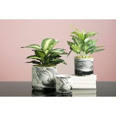 Our Kai Planters feature an on-trend black and ivory marbleized finish. They are the perfect way to incorporate the look of marble in a new and graphic way. Dim