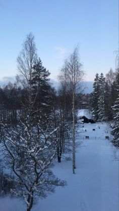 Finland, Snow, Photography, Outdoor, Outdoors, Photograph, Fotografie, Photoshoot, Outdoor Games