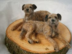 border terrier pair by adore62