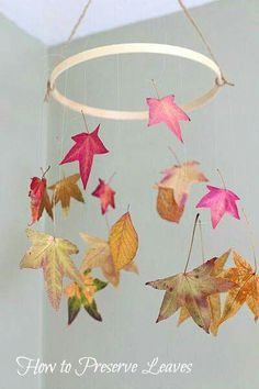 to Preserve Leaves: Fun Fall Craft for Kids A fun fall activity for kids! (Preserving Leaves with Glycerin and Wax Paper)~ A fun fall activity for kids! (Preserving Leaves with Glycerin and Wax Paper)~ Autumn Activities For Kids, Fall Crafts For Kids, Art Activities, Kids Crafts, Art For Kids, Craft Projects, Summer Crafts, Easter Crafts, Autumn Crafts