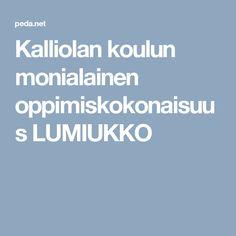 Kalliolan koulun monialainen oppimiskokonaisuus LUMIUKKO Peda