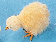 Sculpture: Baby Chicken Collectible Chick Figurine Bird Statue Decoration Model