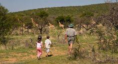 #South #Africa is a perfect #family friendly destination, with plenty of malaria-free reserves to take the #kids! #Safari #Travel #KidsOnSafari