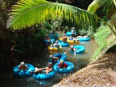 Ride on large inner tubes through ancient irrigation ditches. Explore tropical rain forests and lush valleys. See breathtaking ocean and mountain vistas. Kuaui Backcountry Adventures.