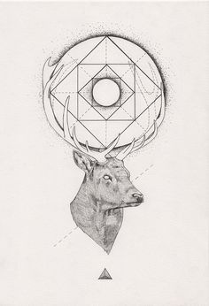 Tattoo Inspiration - (Geometric) Stag. A Peter Carrington illustration. #Art #Deer