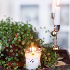 On aime les beaux clichés. Encore plus quand une de nos petites bougies WoodWick y est mis en avant! Thanks @myhappydays.se for you really nice ! ・・・ Fick världens finaste komplimang idag!  Bloggen uppdaterad. ❤️ #woodwick #woodwickcandles #bougie #boutique #fleuriste #lierre #plante #linen #babypowder #decoration #design #style #beauty