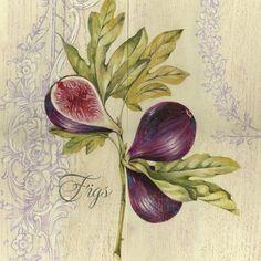 Fresh Figs (Stefania Ferri)