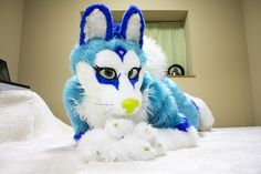 Fursuits by Kosora, via Flickr