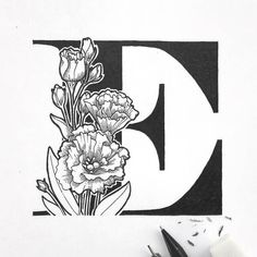 Type Illustration | The Letter E