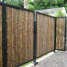 got ugly chainlink fence here are ways to cover it up. Black Bedroom Furniture Sets. Home Design Ideas