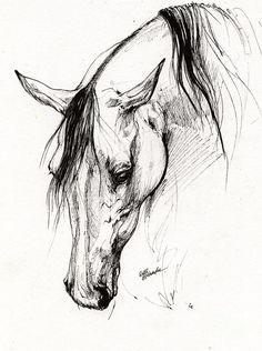 Arabian Horse Ink Drawing 6 Drawing by Angel Tarantella
