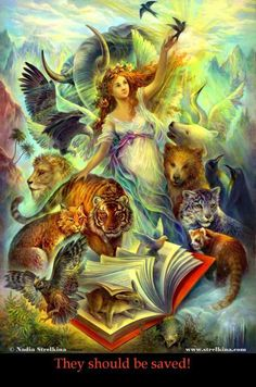 Red book by ~Fantasy-fairy-angel on deviantART (Nadia Strelkina) You see pages, i see a new adventure! Cross Stitch Books, Cross Stitch Art, Fantasy Kunst, Fantasy Art, Fairy Pictures, Earth Design, World Of Fantasy, Red Books, Fantasy Paintings