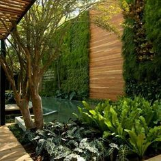 Fantastic fencing ideas that are sure to enhance your garden and maintain privacy. Flower and vegetable garden fence ideas, for small garden with cheap privacy fencing ideas. Small Gardens, Outdoor Gardens, Vertical Gardens, Vertical Garden Wall, Outdoor Patios, Backyard Fences, Fence Garden, Farm Fence, Horse Fence