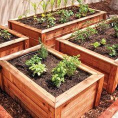 The Benefits of Raise Garden Bed Designs | Roomy Designs