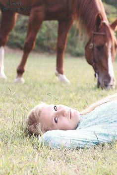 Photography with horse is the background