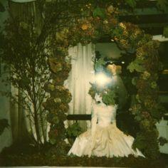 #hillenius #couture  #shop #window #etalages #autumn #herfst