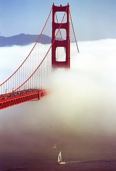 San Francisco's Golden Gate Bridge is one of the most photographed landmarks in the world. But the fog can sometimes make it hard to capture. Looks like this photograph was taken just in time.