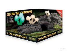 Exo Terra Glow Mushrooms Reptile Terrarium Natural Habitat Decoration Ship Daily