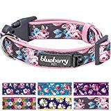 Blueberry Pet Soft & Comfy Welcoming Spring Rose Flower Prints Girly Adjustable Padded Dog Collar, Neck 30cm-40cm, Small, Collars for Dogs, Matching Lead & Harness Available Separately